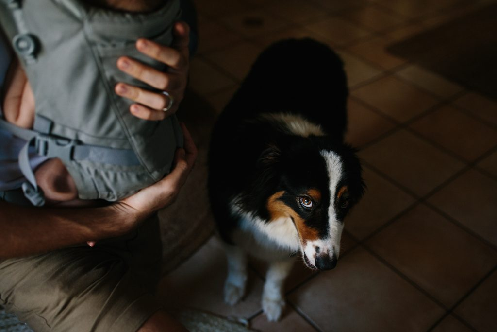 father and baby son with dog