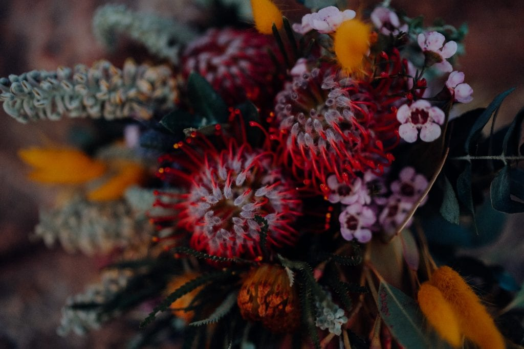 close up of flowers from Broome Florist