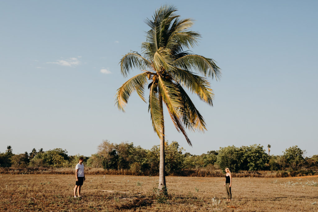 two people standing at a distance to a palm tree north of broome during their couple shoot