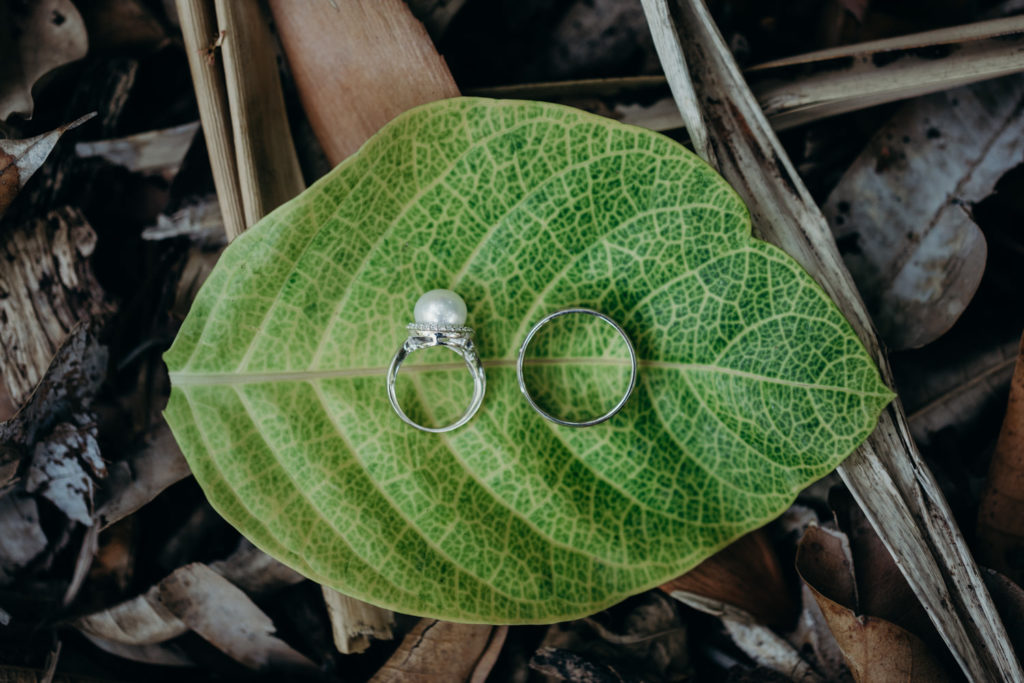 wedding rings placed on a large green leaf