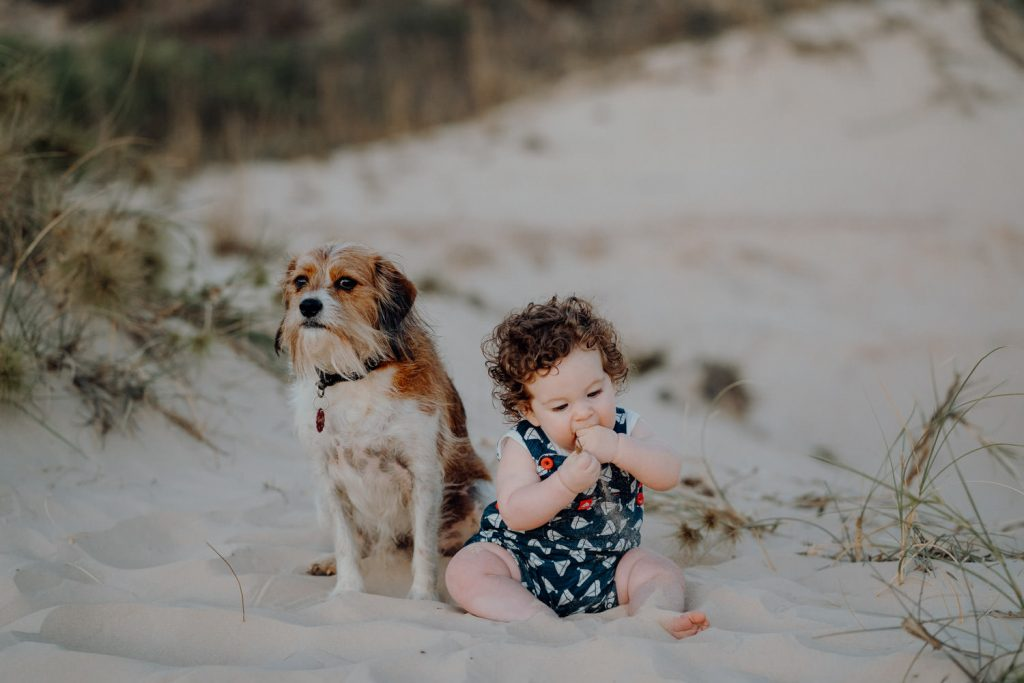dog and little boy sitting in Cable Beach dunes during Nik Buttigieg Broome Family Photographer session