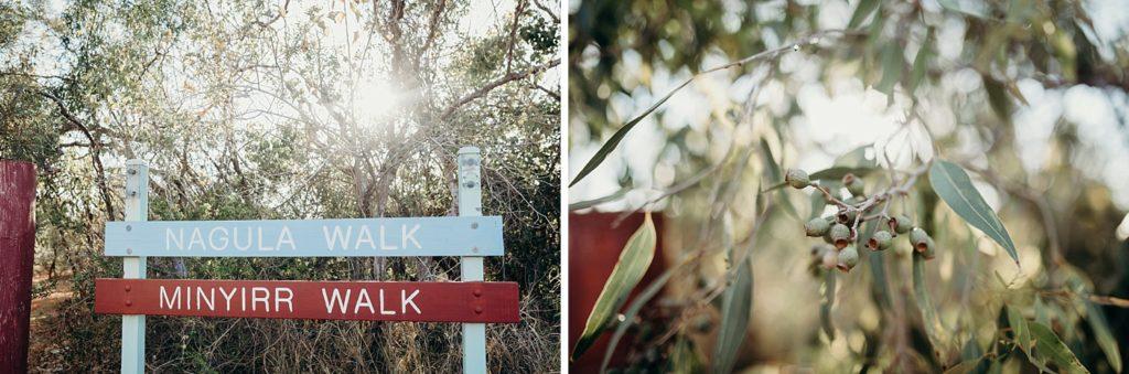 Minyirr Park sign indicating walk way